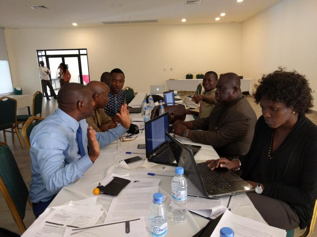 Colleagues in Guinea discuss One Health approaches for improving public health capacity.