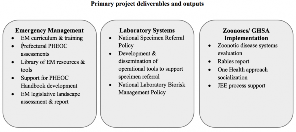 Summary diagram of Guinea project deliverables.